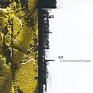 Album cover for In The Monotonous Flowers by K2