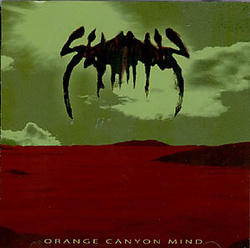 Album cover for Orange Canyon mind by Skullflower