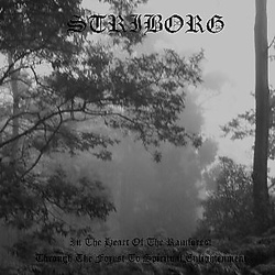 Album cover for In the Heart of the Rainforest / Through the Forest to Spiritual Enlightenment by Striborg