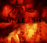Unleash by Zbigniew Karkowski and Daniel Menche