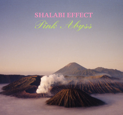 Album cover for Pink Abyss by Shalabi Effect